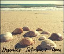 Desembre - Setmana 7 - Anna