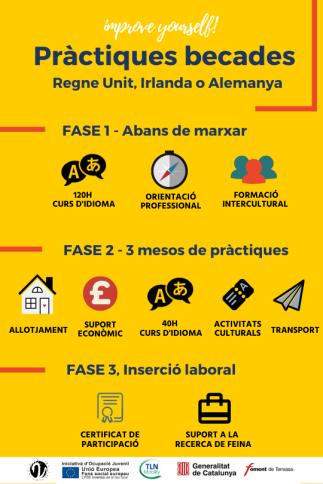 Infografia TLN 19