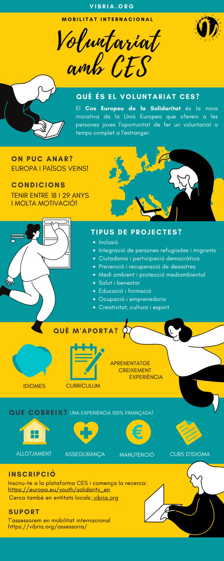 infografies web vibria